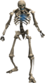 Skeleton (Lumbridge Catacombs).png