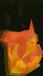 Fire titan chathead