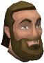Armadylean quartermaster chathead.png
