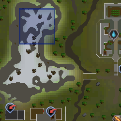 Oráculo mapa