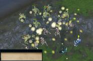Swan War