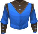 Wizard robe top