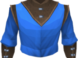 Wizard robe top