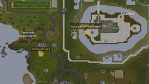 Morfomago(a) mapa