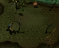 Hunting swamp lizards.png