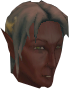 File:Elf warrior (Arandar) chathead.png
