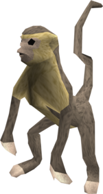 Monkey (grey and beige) pet