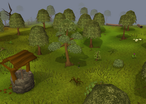 Lumbridge forest old