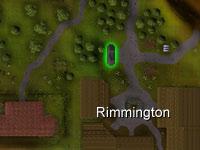 Rimmington portal