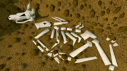 Digsite buried skeleton