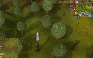 Compass clue Rellekka south-east of POH portal