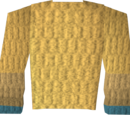Robe of Elidinis (top)