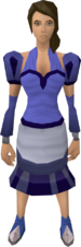 Blue elegant clothing equipped (female)