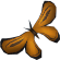 Orange soporith moth detail