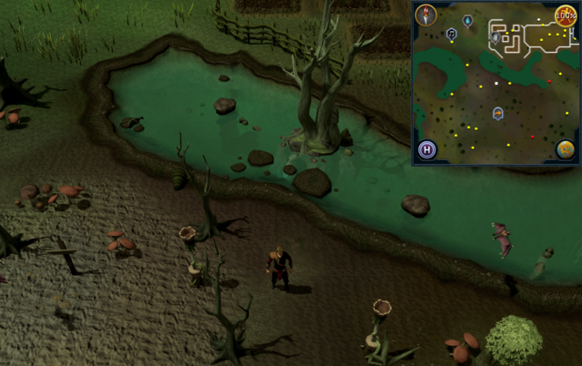 File:Compass clue Port Phasmatys south of farming patches.png