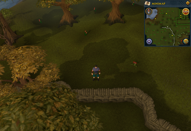 File:Compass clue Yanille south-west of Gnome maze.png