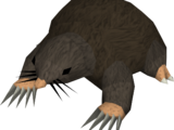 Giant Mole (historical)