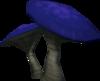 Russula detalhe