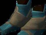 Sorcerer's boots