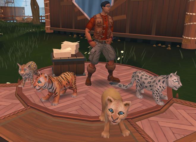 Big Cats news image