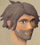 Chief Thief Robin chathead