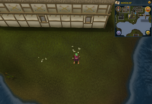 Compass clue Ardougne south of Poison Arrow pub