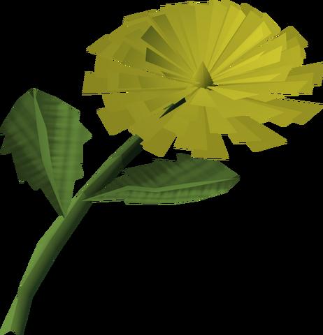 File:Dandelion detail.png