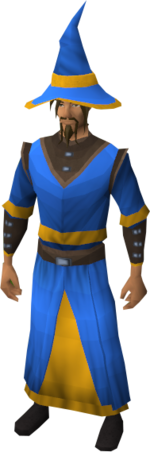 Wizard robes (g) equipped