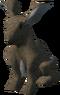 Rabbit (Vinesweeper)