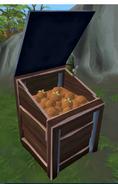 Rotten tomatoes in bin