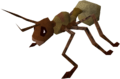 Giant ant worker.png