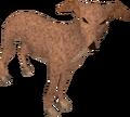 Greyhound (light brown) pet.png