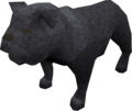 Bulldog (black) pet.png