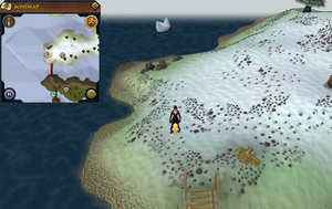 Scan clue Fremennik Isles west tip of south-west snowy island