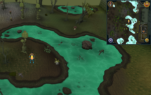Scan clue Haunted Woods just west of Port Phasmatys west entrance