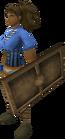 Bronze sq shield equipped
