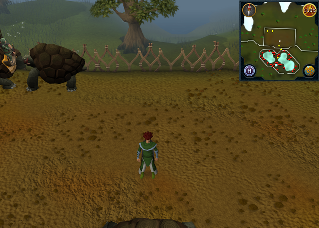 File:Compass clue Tree Gnome Stronghold in centre of tortoise pen.png