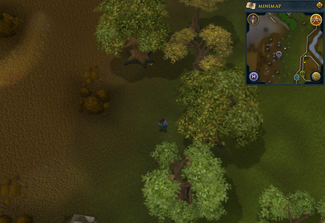 File:Compass clue Tree Gnome Stronghold outside Char's training cave.png