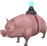 Pig (pet) prayer