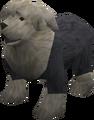 Sheepdog (black) pet.png
