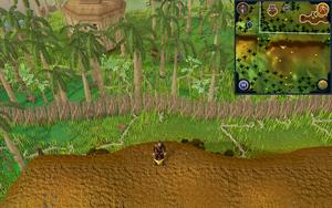 Scan clue Kharazi Jungle on ridge south-east of general store