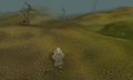 Low wilderness.png