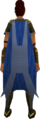 Team-22 cape equipped.png