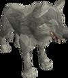 Lobo (nível 64)