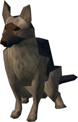 Lumbridge guard dog