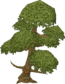 Yew tree ent.png