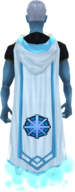 Master quest cape equipped