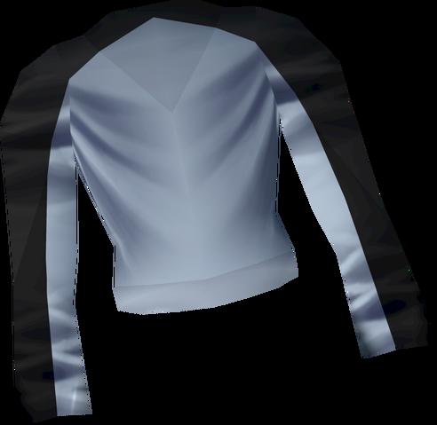 File:Penguin torso detail.png