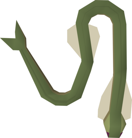 File:Raw cave eel detail.png