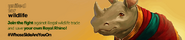 Royal Rhino hunting lobby banner